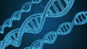 Pobieranie DNA